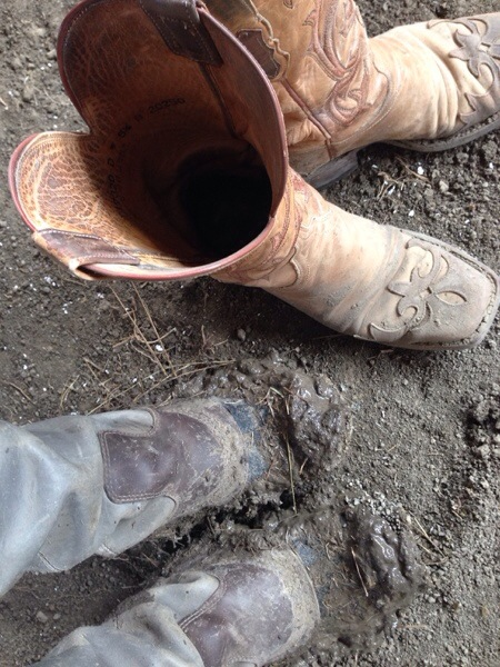 clean and muddy boots