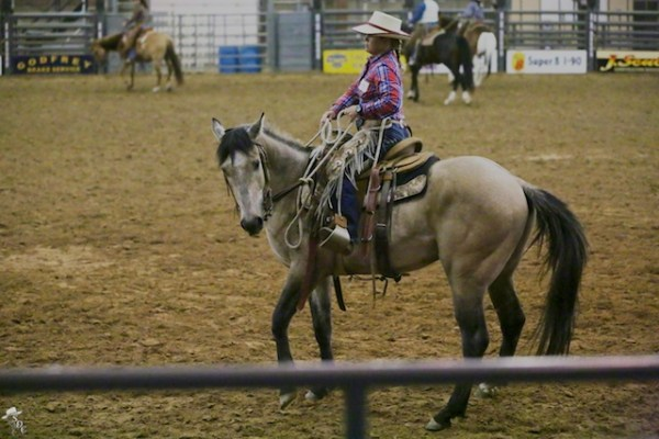 riding with Buck, Buck Brannaman clinics, cow-horse turn
