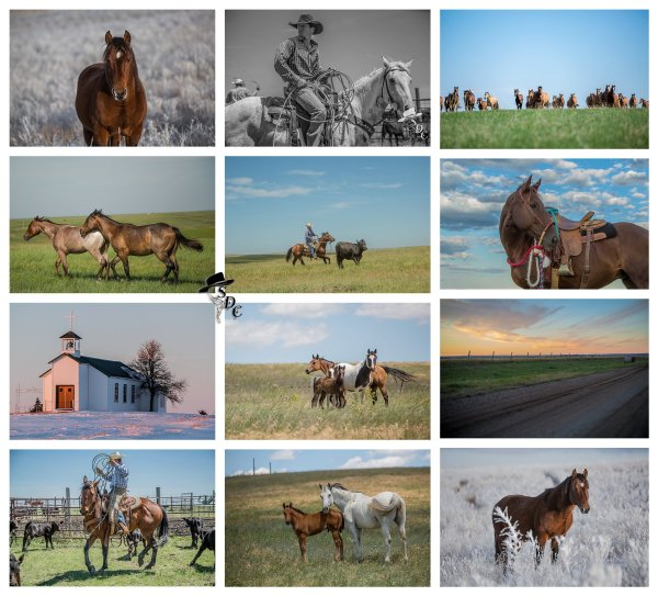2016 Calendar, south dakota cowgirl photography, western lifestyle, american cowboy, photography