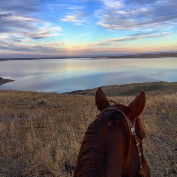 sunsets, the south dakota cowgirl, south dakota cowgirl photography, horses, life between the ears, i'm thankful for this view