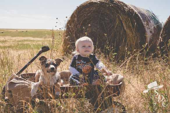 toddler photography, toddler portrait, south dakota cowgirl photography, the south dakota cowgirl, ranch life, baby photography, portrait photography