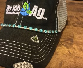 My Job Depends on Ag: Contest