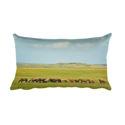 Scatter Butte Rectangular Pillow