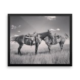 """""""Head to Tail"""" Framed Premium Poster"""