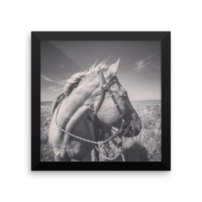 """Avie in the Wind"" Framed Premium Poster"