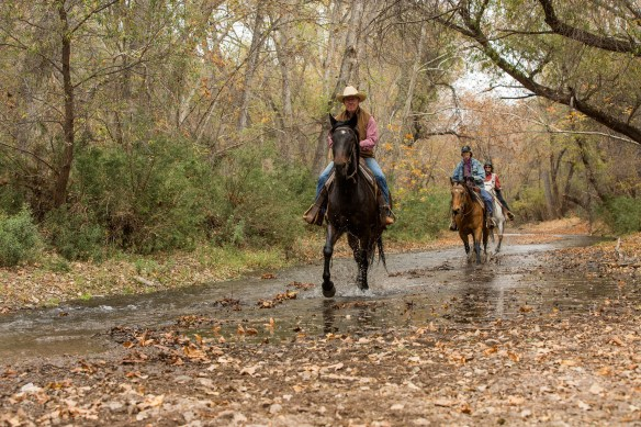 Circle Z Guest Ranch, Loping Rides