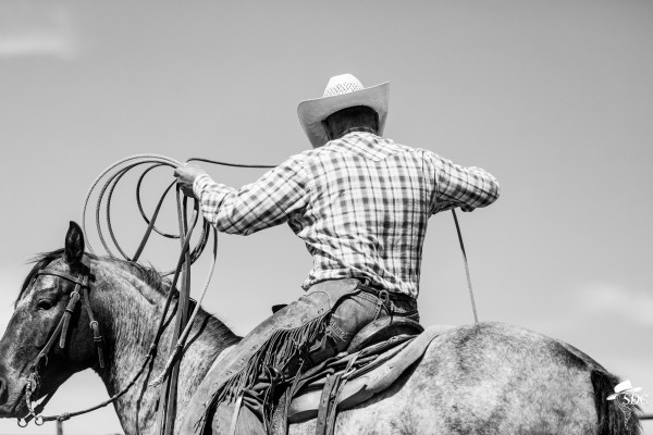 the south dakota cowgirl, south dakota photography, cowboy