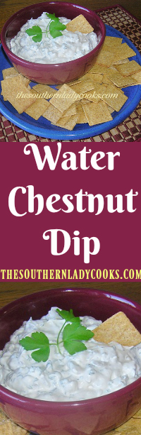 the-southern-lady-cooks-water-chestnut-dip