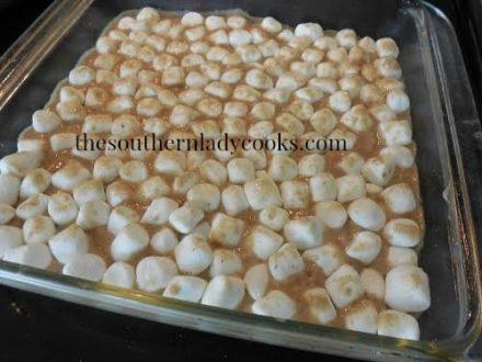 TSLCAppleSauceMarshmallow4