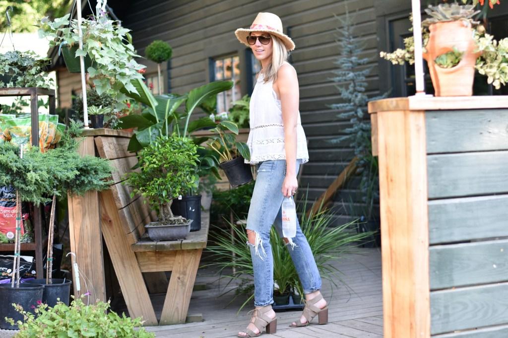 best outdoor plants to keep mosquitos away