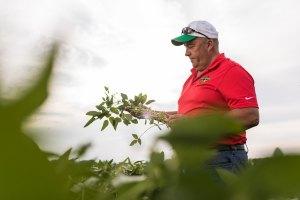 An image depicting a U.S. soybean farmer in a field.
