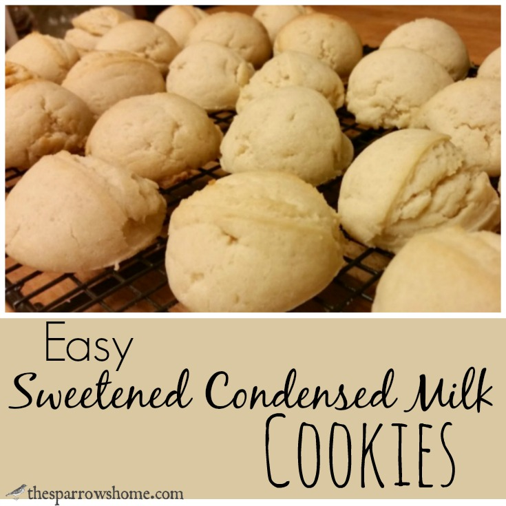 Maybe the Easiest Cookies Ever
