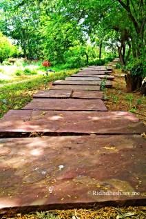Botanical trail