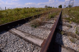 Abandoned train tracks off Derry Road in Milton.