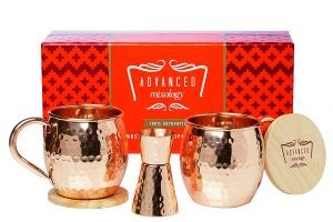 Set of 2 Copper Moscow Mule Cups Gift Box with Copper Jigger & Coasters $31.99 (Regular $99.99)