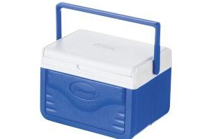 Coleman FlipLid Cooler, 5 Quart $10.00 (Regular $22.99)