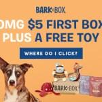 BarkBox RARE Sale $5 First Dog Box + FREE Toy