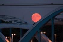 just peeking over the bridge
