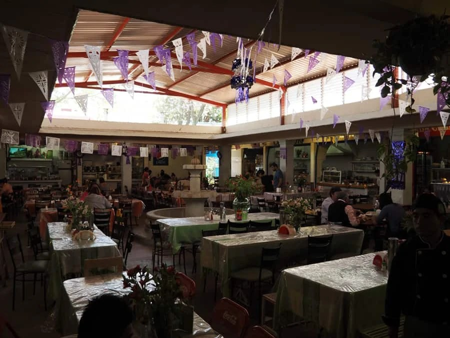 An open air restaurant market experience in Oaxaca City, Mexico. The food was delicious! | via The Spirited Violet