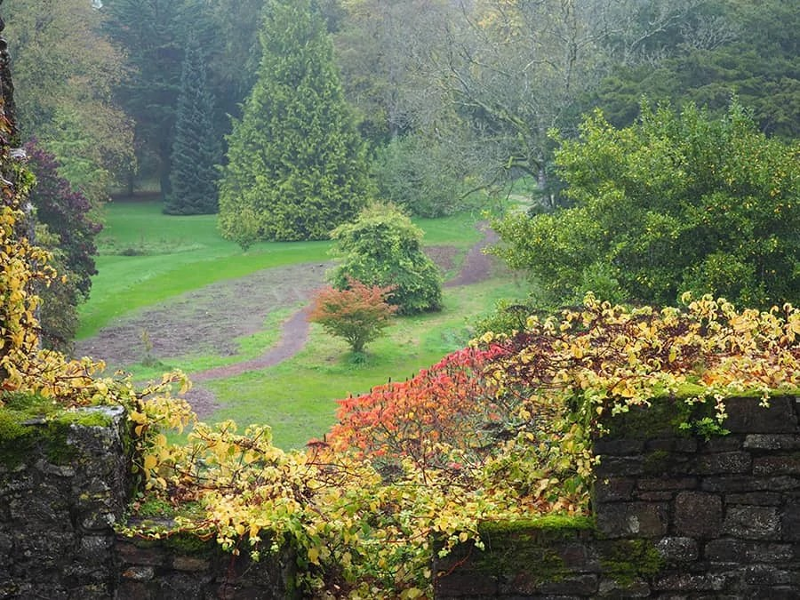 fall at Blarney Castle in Ireland   I didn't kiss the Blarney Stone via The Spirited Violet