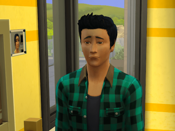 A very sad Sim