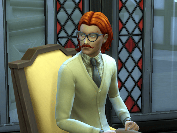 Sims 4 Cottage Living librarian