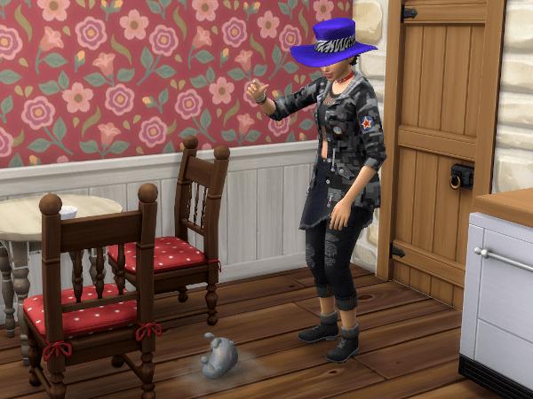 Sims 4 feed a dust bunny