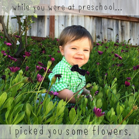 picked you flowers