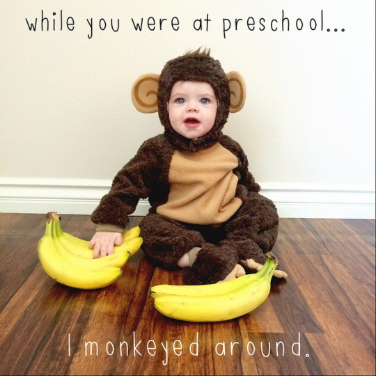 monkeyed around