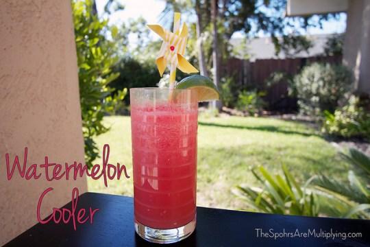 Watermelon Slushie Cooler