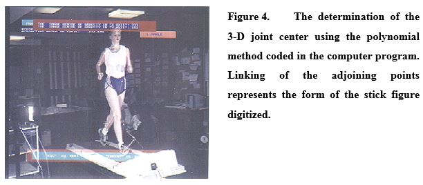 In The Analysis Procedure Only Kinematic Characteristics Of Left Knee Stance Phase Were Extensively Analyzed Although Entire Body Was