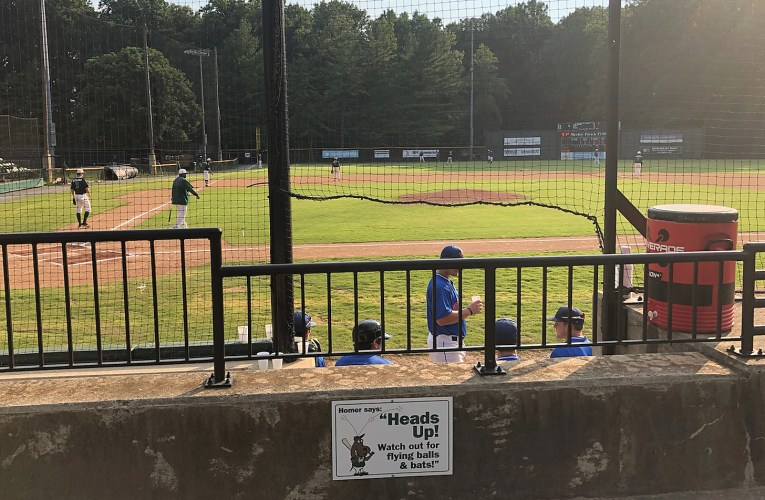 Cal Ripken League cancels 2020 season
