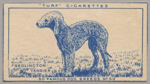 %22Turf'Cigarettes(No.50)2