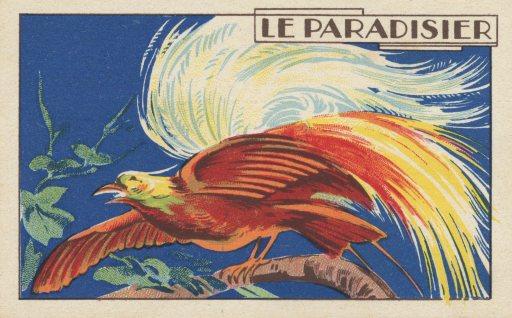 LeParadisier