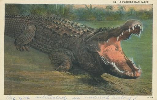 FloridaMan-Eater