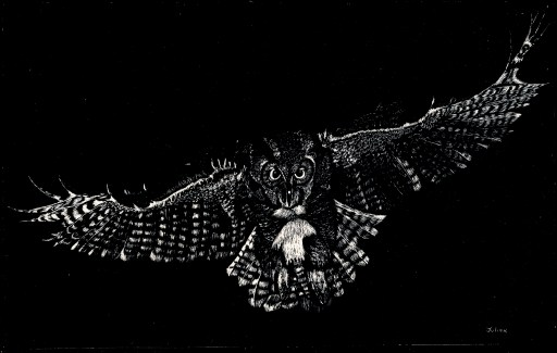 Pierce,Owl copy