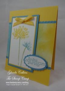 Daffodil Too Kind