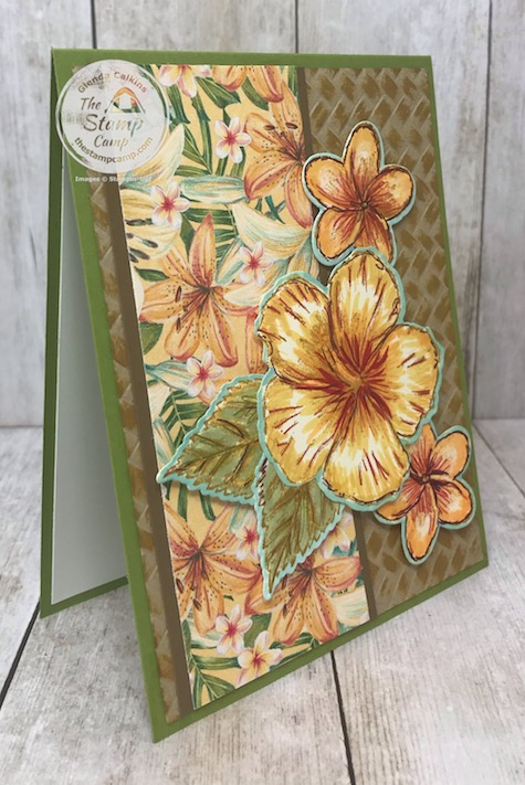 The Timeless Tropical Bundle and the Tropical Oasis Designer Series Paper makes me want to get away to the tropics for some rest and relaxation. Details are on my blog here: https://wp.me/p59VWq-aOP #thestampcamp #stampinup #tropical #timelesstropical