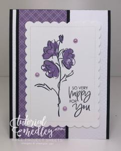 Color & Contour Stampin' Up! Bundle For The Win!
