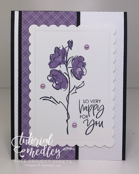 Color & Contour Stampin' Up!