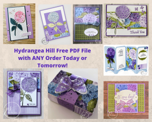 Don't Miss Out On The Hydrangea Hill Designer Series Paper!