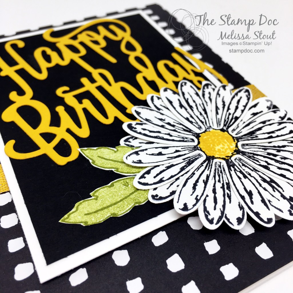 Close Up of Daisy Delight Happy Birthday #TGIFC108