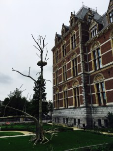 Cool Balanced Rock and Tree sculpture in front of the Rijksmuseum