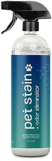 pet stain removal bottle