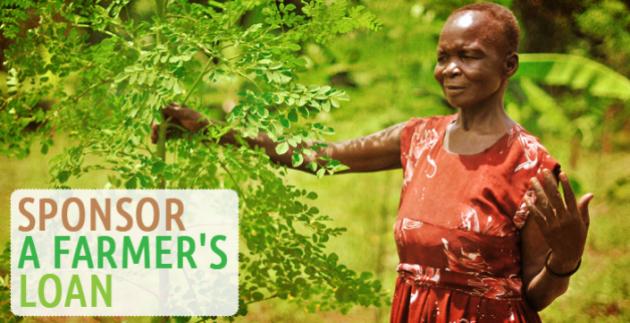 sponsor a farmers loan