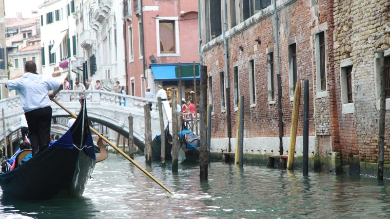 South African In: Venice