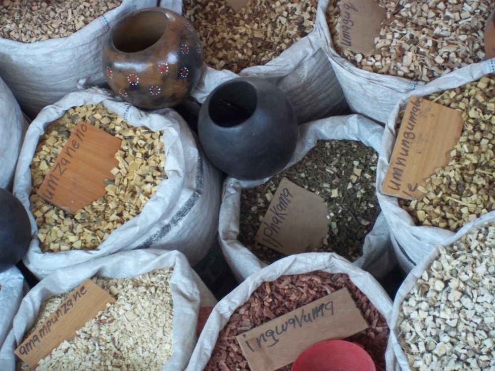 south-african-traditional-medicines
