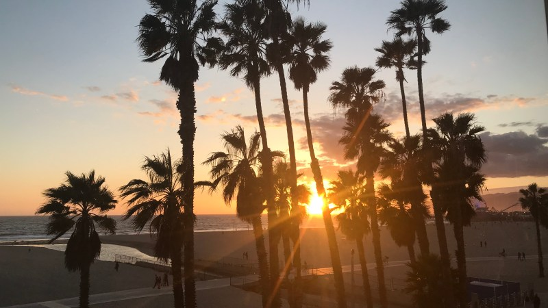 Top 5 Things To Do in LA!