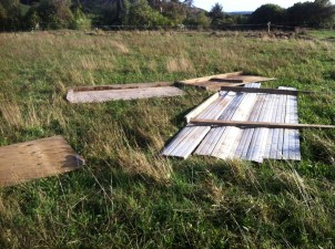 One of the pig houses, luckily recently vacated by Hugh, was completely destroyed.