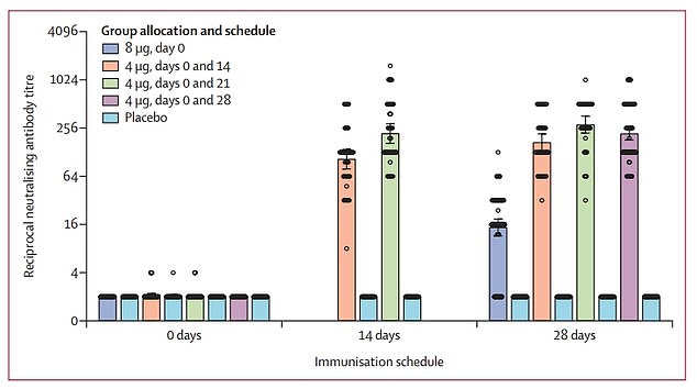 The greatest antibody responses were made when participants were given two 4mg doses either 21 days or 28 days apart (green and purple bars)